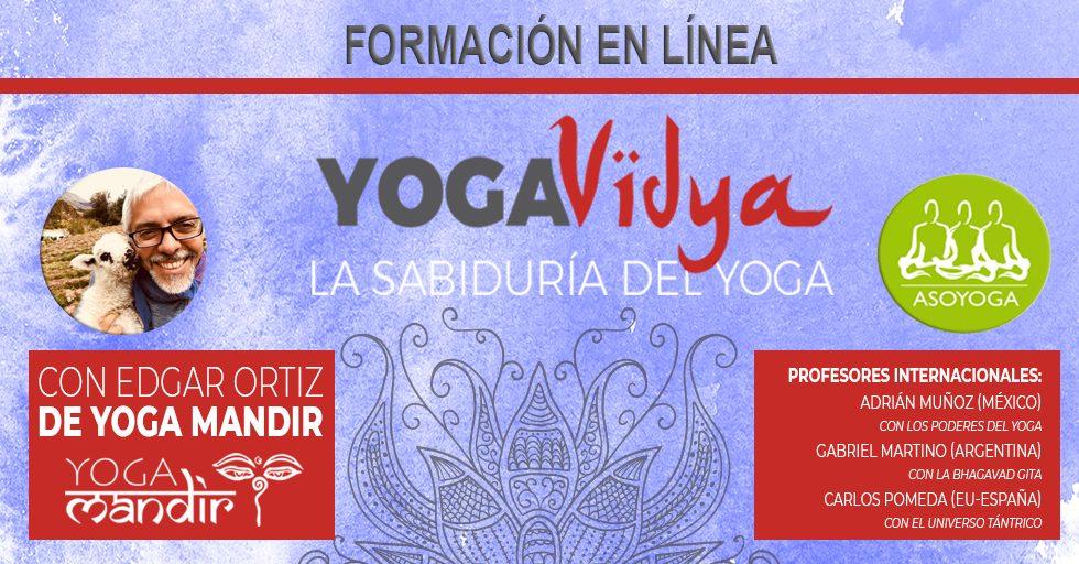 Seminario: Yoga Vidya-La Sabiduría del Yoga